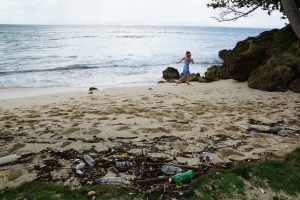 Plastic in Our Oceans – A Short Introduction