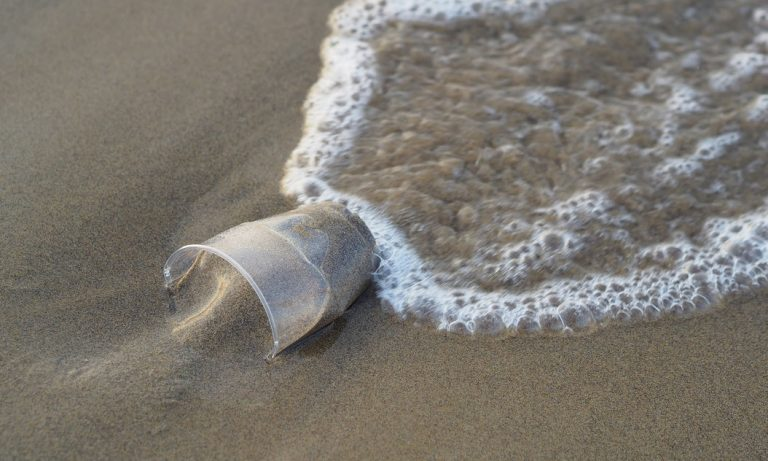 What's the most polluted Ocean?