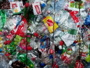 How Can I Fight Plastic Pollution?